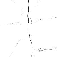 syn0301.jpg